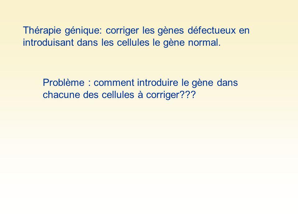 Thérapie génique: corriger les gènes défectueux en introduisant dans les cellules le gène normal. Problème : comment introduire le gène dans chacune d