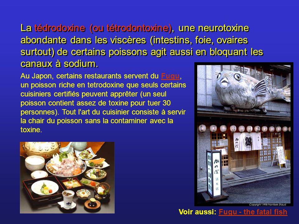 La tédrodoxine (ou tétrodontoxine), une neurotoxine abondante dans les viscères (intestins, foie, ovaires surtout) de certains poissons agit aussi en