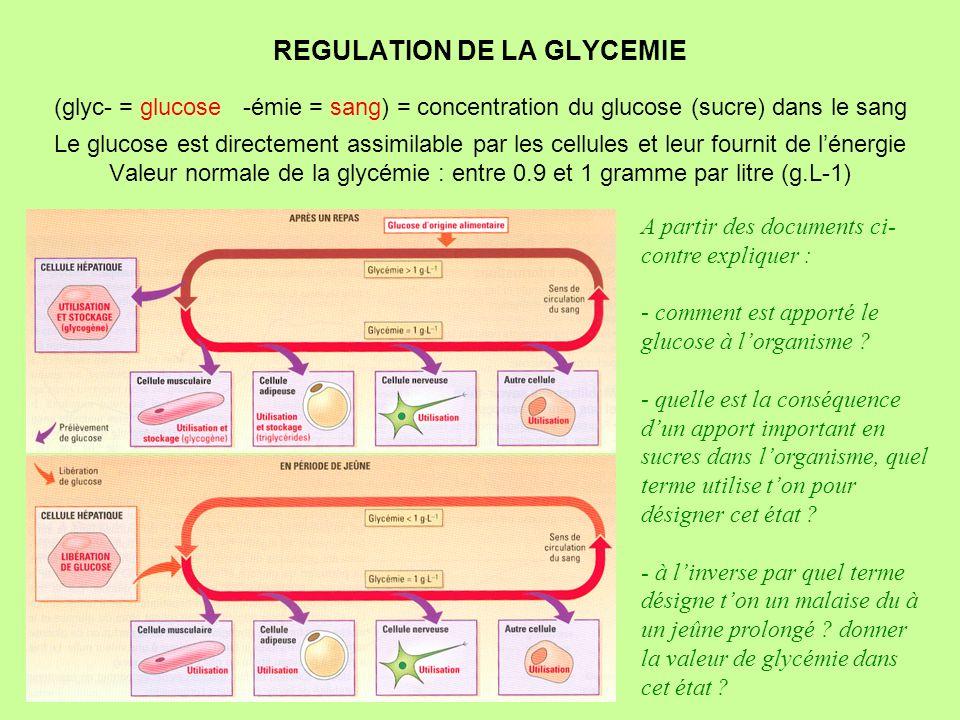 REGULATION DE LA GLYCEMIE (glyc- = glucose -émie = sang) = concentration du glucose (sucre) dans le sang Le glucose est directement assimilable par le