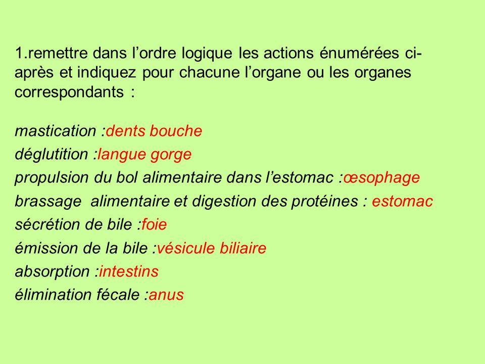 F. nutrition F. excrétion Alvéole pulmonaire bronchioles