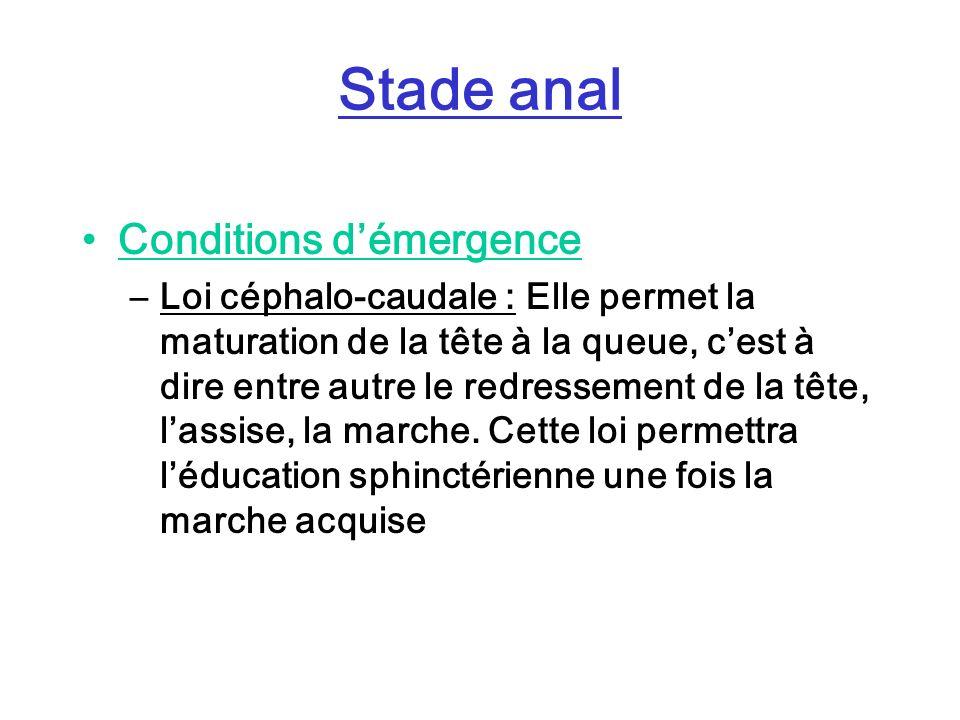 Stade anal Conditions démergence –Loi céphalo-caudale : Elle permet la maturation de la tête à la queue, cest à dire entre autre le redressement de la