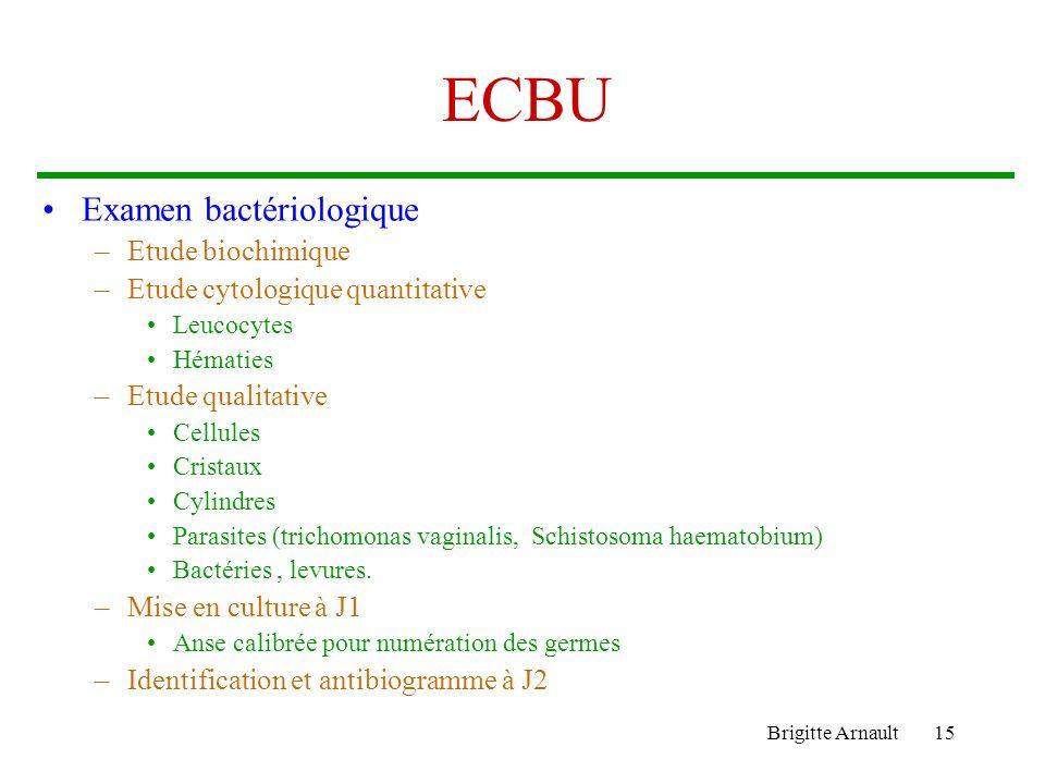 Brigitte Arnault15 ECBU Examen bactériologique –Etude biochimique –Etude cytologique quantitative Leucocytes Hématies –Etude qualitative Cellules Cris