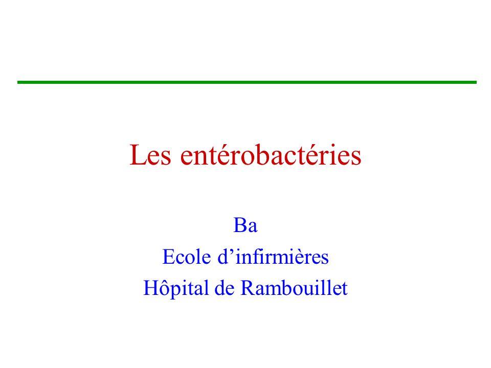 Les entérobactéries Ba Ecole dinfirmières Hôpital de Rambouillet
