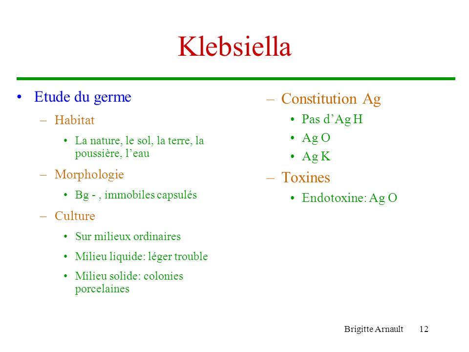 Brigitte Arnault12 Klebsiella Etude du germe –Habitat La nature, le sol, la terre, la poussière, leau –Morphologie Bg -, immobiles capsulés –Culture S