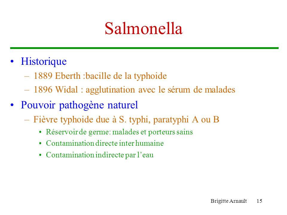 Brigitte Arnault15 Salmonella Historique –1889 Eberth :bacille de la typhoide –1896 Widal : agglutination avec le sérum de malades Pouvoir pathogène n