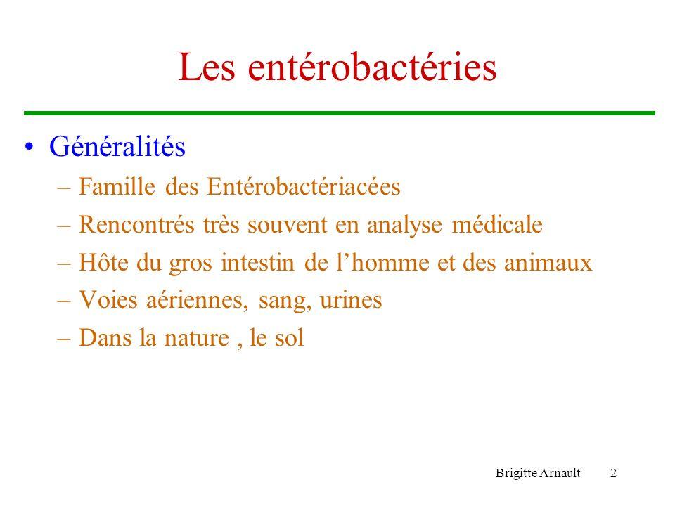 Brigitte Arnault2 Les entérobactéries Généralités –Famille des Entérobactériacées –Rencontrés très souvent en analyse médicale –Hôte du gros intestin de lhomme et des animaux –Voies aériennes, sang, urines –Dans la nature, le sol