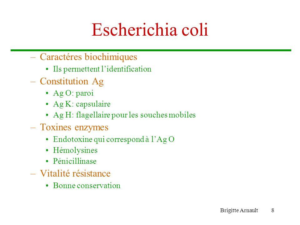 Brigitte Arnault8 Escherichia coli –Caractéres biochimiques Ils permettent lidentification –Constitution Ag Ag O: paroi Ag K: capsulaire Ag H: flagell