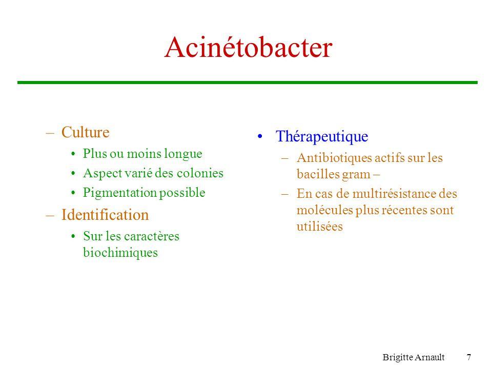 Brigitte Arnault7 Acinétobacter –Culture Plus ou moins longue Aspect varié des colonies Pigmentation possible –Identification Sur les caractères biochimiques Thérapeutique –Antibiotiques actifs sur les bacilles gram – –En cas de multirésistance des molécules plus récentes sont utilisées
