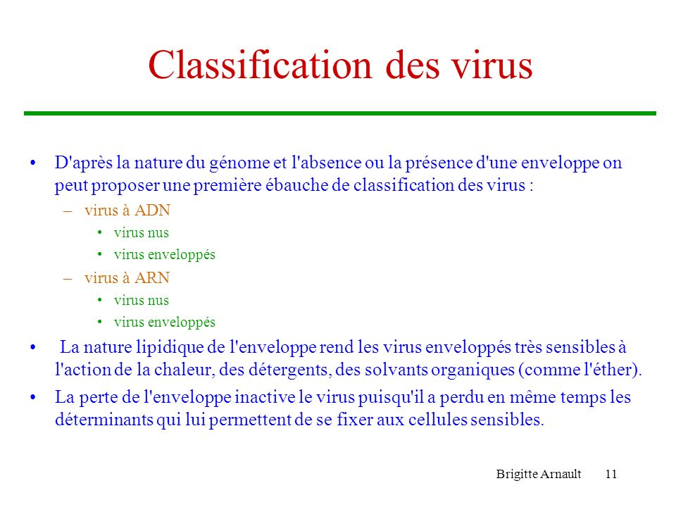 Brigitte Arnault11 Classification des virus D'après la nature du génome et l'absence ou la présence d'une enveloppe on peut proposer une première ébau