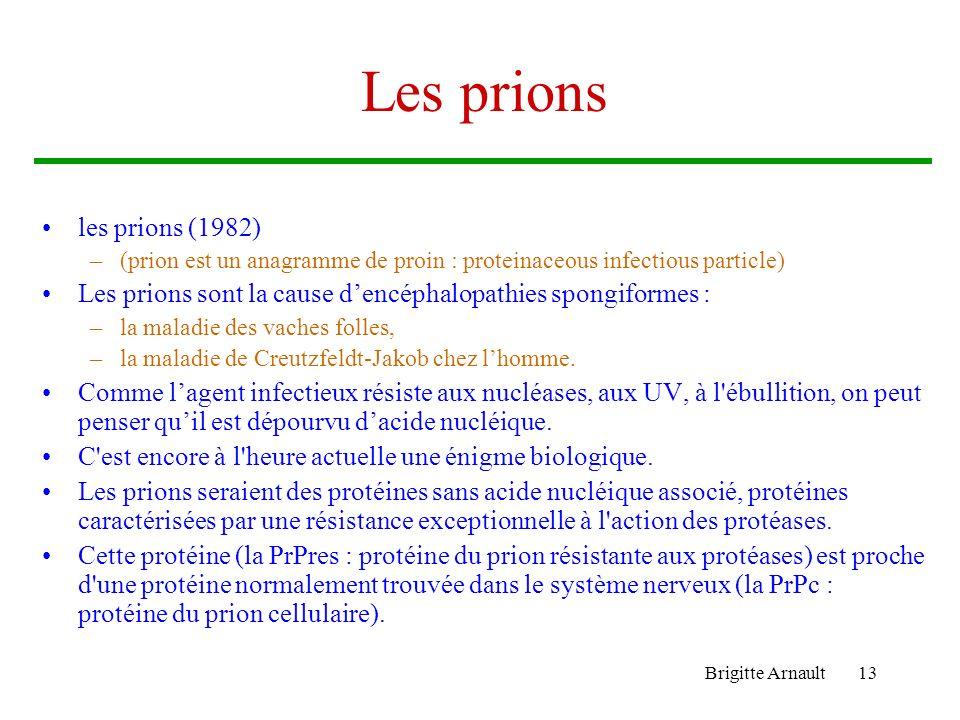Brigitte Arnault13 Les prions les prions (1982) –(prion est un anagramme de proin : proteinaceous infectious particle) Les prions sont la cause dencép