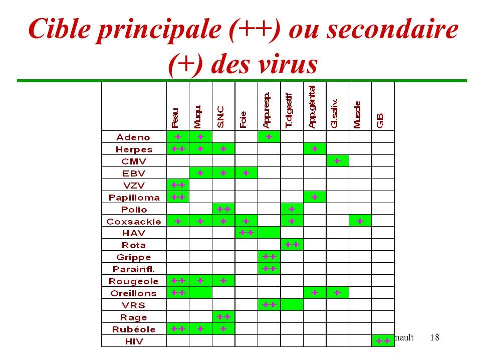 Brigitte Arnault18 Cible principale (++) ou secondaire (+) des virus
