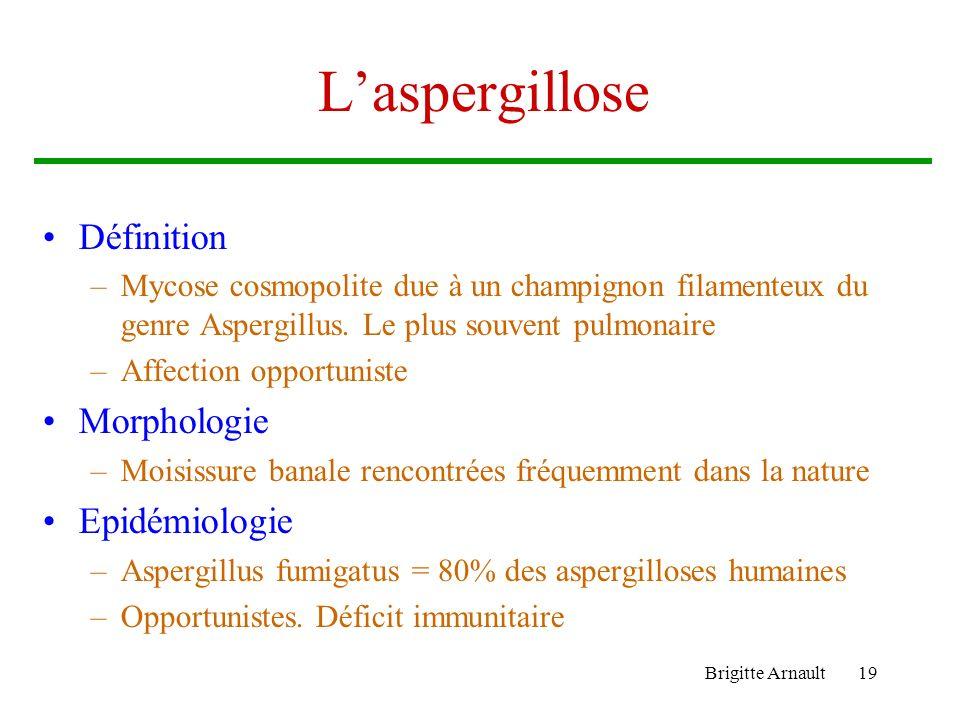 Brigitte Arnault19 Laspergillose Définition –Mycose cosmopolite due à un champignon filamenteux du genre Aspergillus. Le plus souvent pulmonaire –Affe