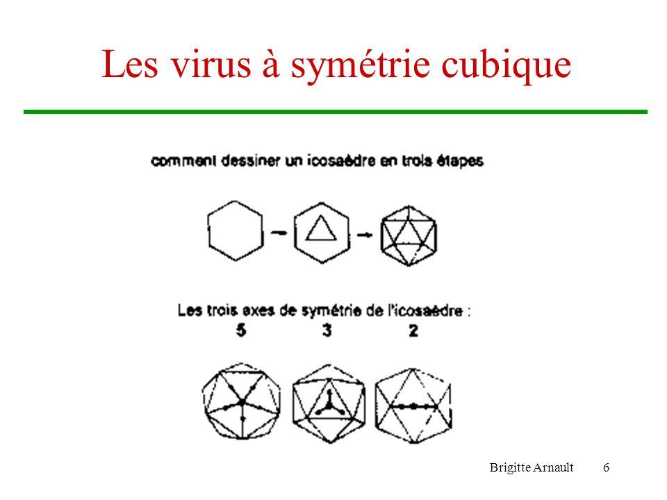 Brigitte Arnault6 Les virus à symétrie cubique