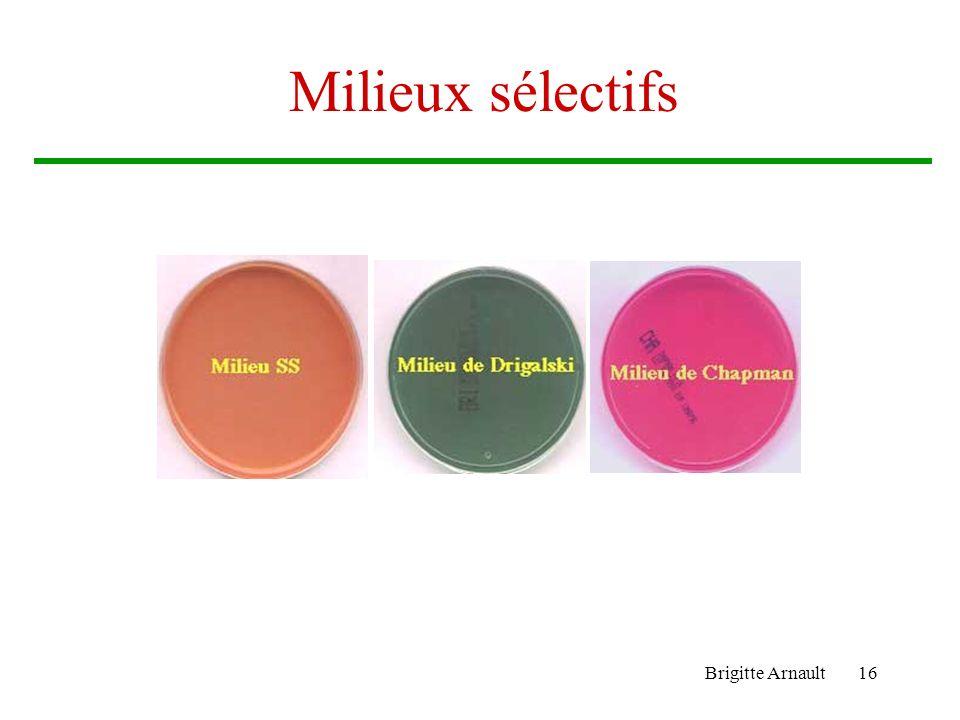 Brigitte Arnault16 Milieux sélectifs