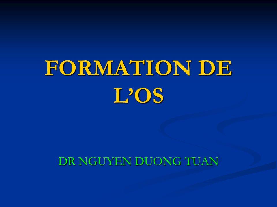 FORMATION DE LOS DR NGUYEN DUONG TUAN