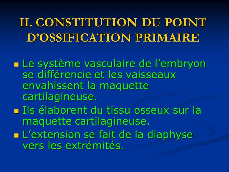 II. CONSTITUTION DU POINT DOSSIFICATION PRIMAIRE Le système vasculaire de lembryon se différencie et les vaisseaux envahissent la maquette cartilagine