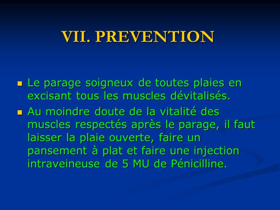 VII. PREVENTION Le parage soigneux de toutes plaies en excisant tous les muscles dévitalisés. Le parage soigneux de toutes plaies en excisant tous les