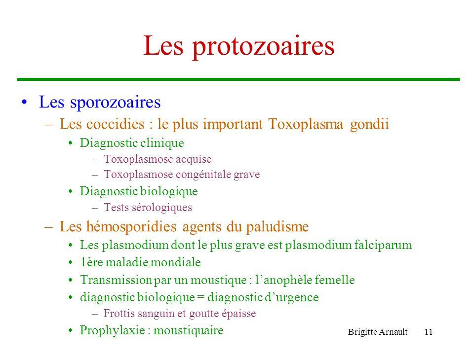 Brigitte Arnault11 Les protozoaires Les sporozoaires –Les coccidies : le plus important Toxoplasma gondii Diagnostic clinique –Toxoplasmose acquise –T