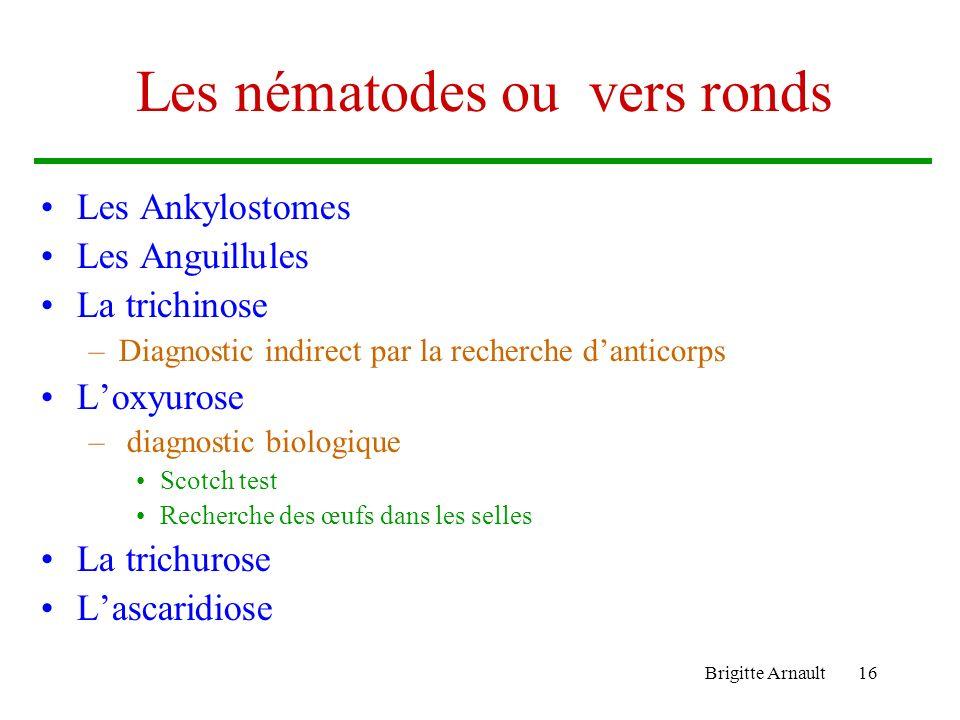 Brigitte Arnault16 Les nématodes ou vers ronds Les Ankylostomes Les Anguillules La trichinose –Diagnostic indirect par la recherche danticorps Loxyuro
