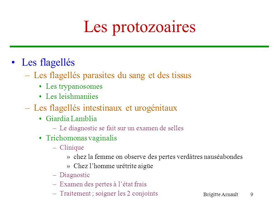 Brigitte Arnault9 Les protozoaires Les flagellés –Les flagellés parasites du sang et des tissus Les trypanosomes Les leishmaniies –Les flagellés intes