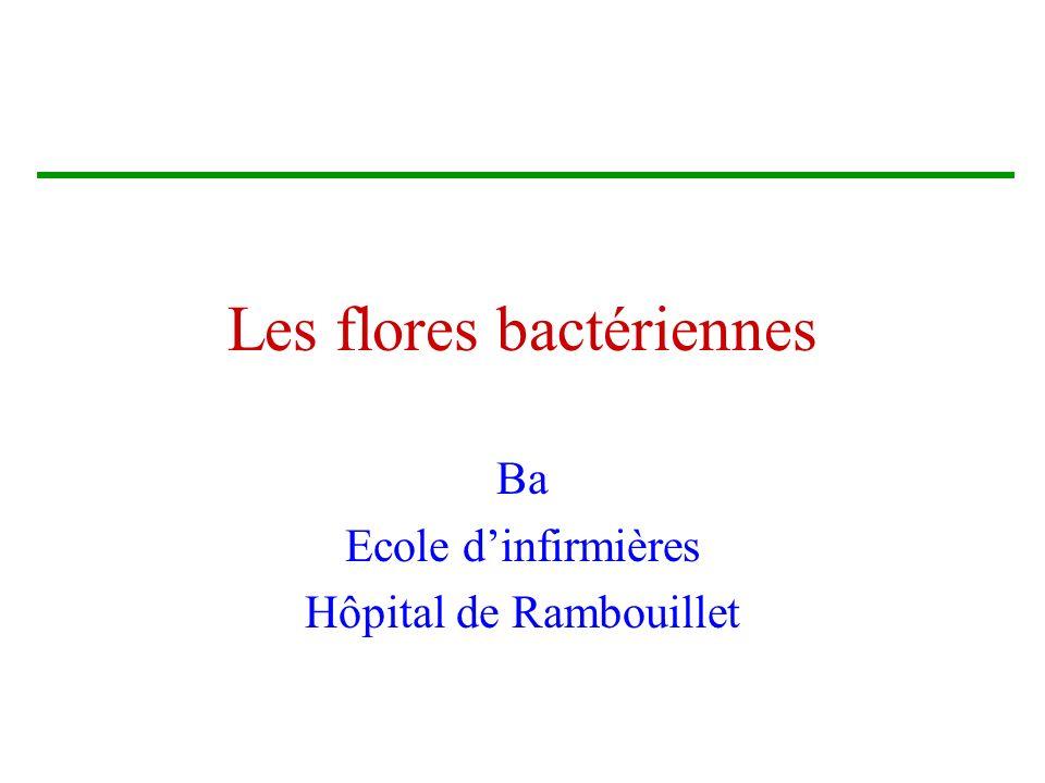 Brigitte Arnault21 Les BMR Streptocoque pneumoniae SARM (Staphylocoque méthicilline résistant ) Les entérobactéries productrices de BLSE Les pseudomonas producteurs de céphalosporinase Les Acinetobacter (baumannii)