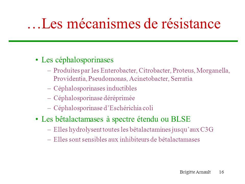 Brigitte Arnault15 Les mécanismes de résistance… Les enzymes inactivant les antibiotiques –Les bêtalactamases Les pénicillinases plasmidiques : résist
