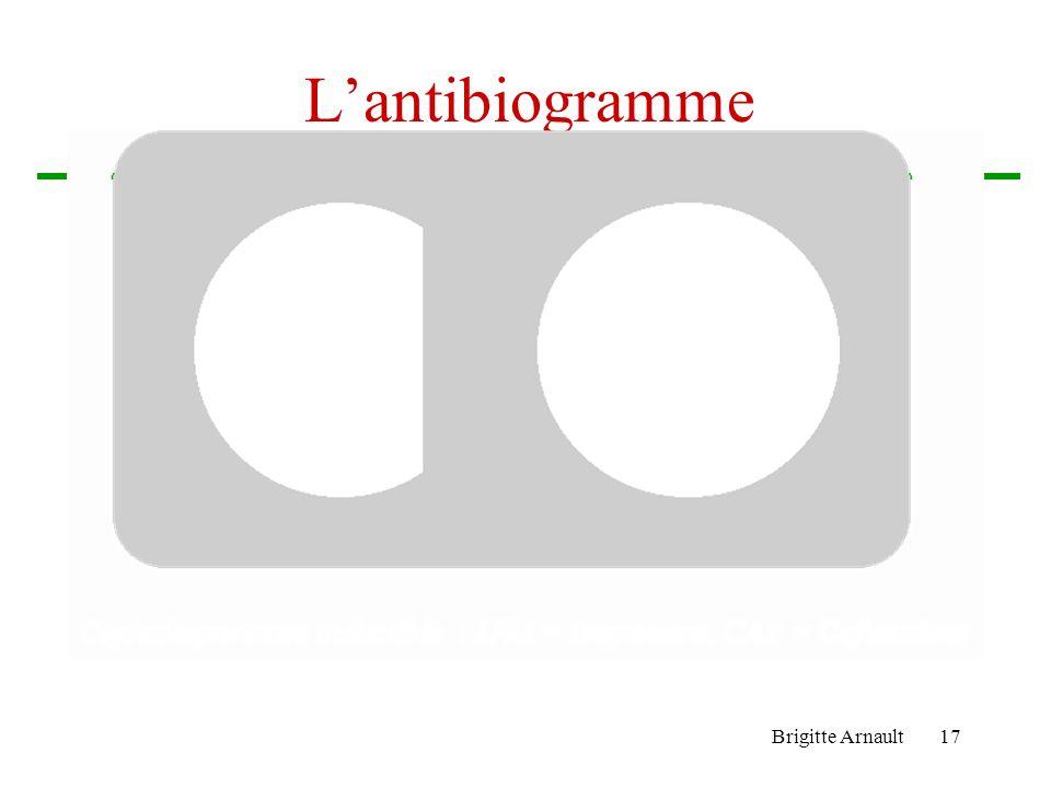Brigitte Arnault16 …Les mécanismes de résistance Les céphalosporinases –Produites par les Enterobacter, Citrobacter, Proteus, Morganella, Providentia,