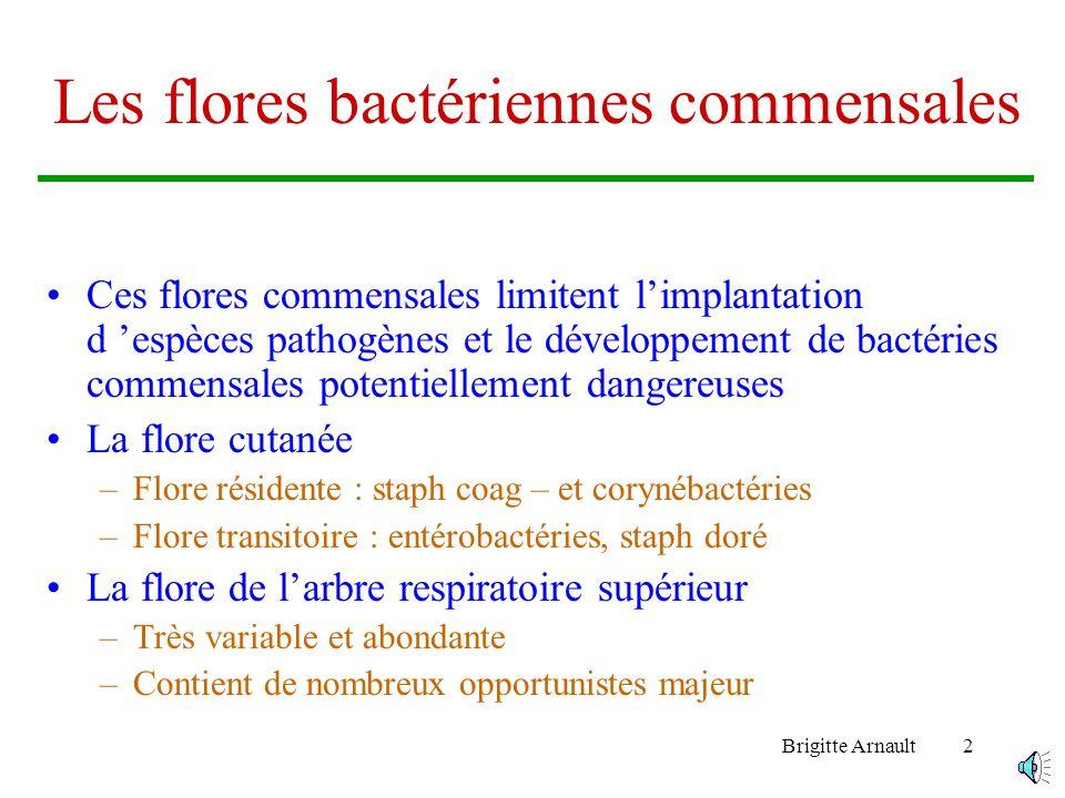 Les flores bactériennes Ba Ecole dinfirmières Hôpital de Rambouillet