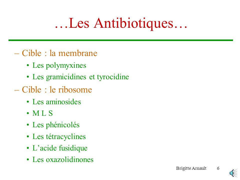 Brigitte Arnault6 …Les Antibiotiques… –Cible : la membrane Les polymyxines Les gramicidines et tyrocidine –Cible : le ribosome Les aminosides M L S Les phénicolés Les tétracyclines Lacide fusidique Les oxazolidinones