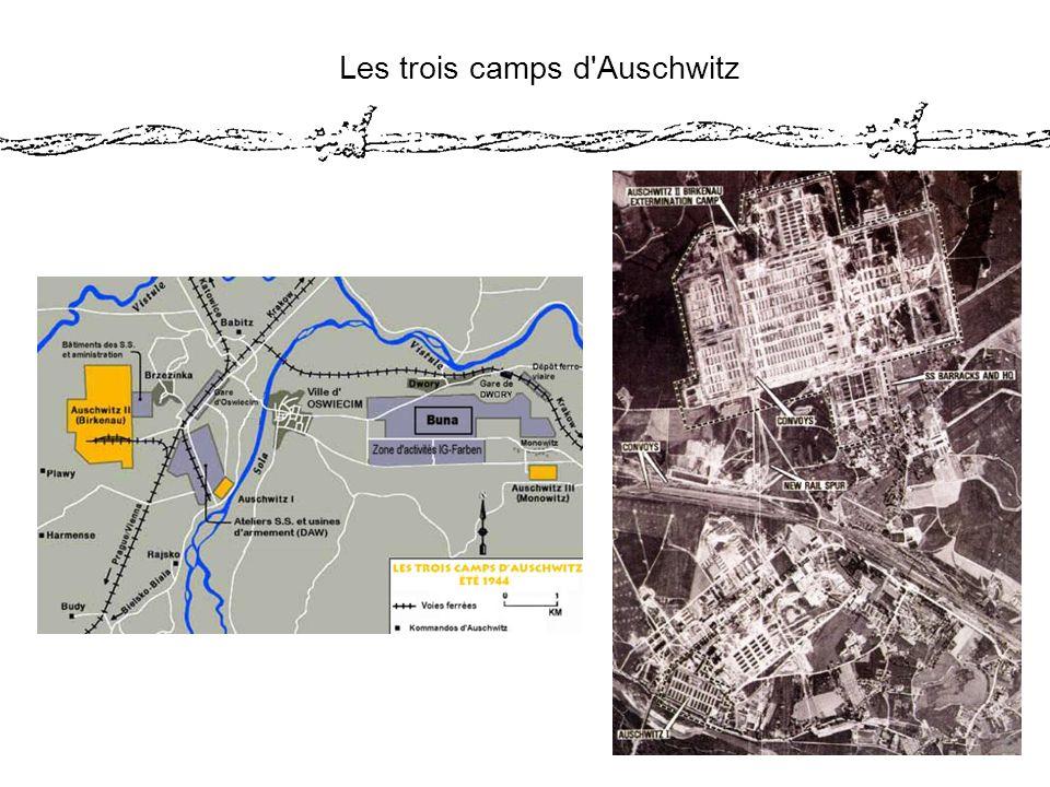 Les trois camps d Auschwitz
