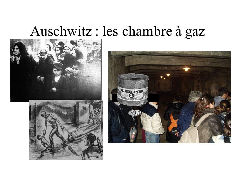 Auschwitz : les chambre à gaz