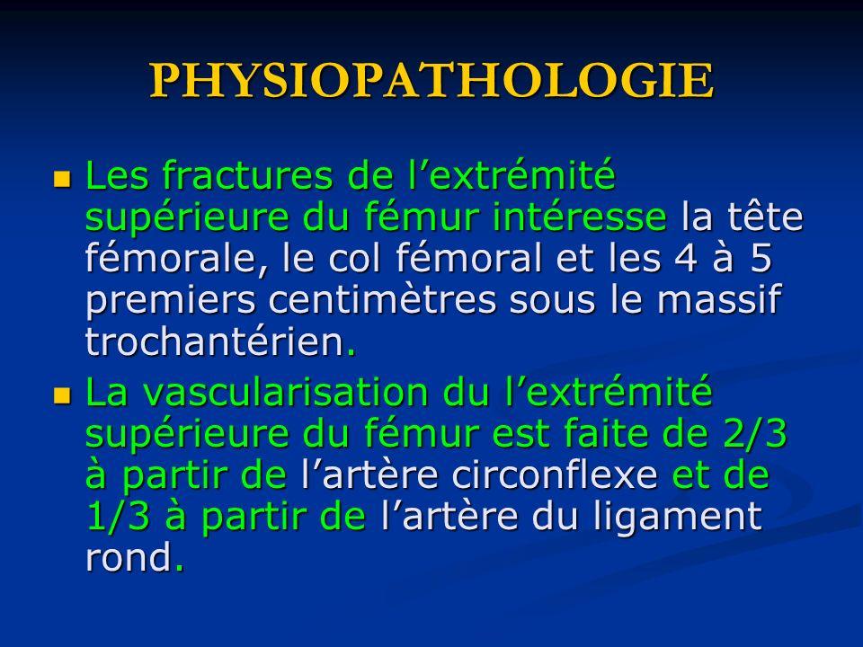 PHYSIOPATHOLOGIE Les fractures de lextrémité supérieure du fémur intéresse la tête fémorale, le col fémoral et les 4 à 5 premiers centimètres sous le