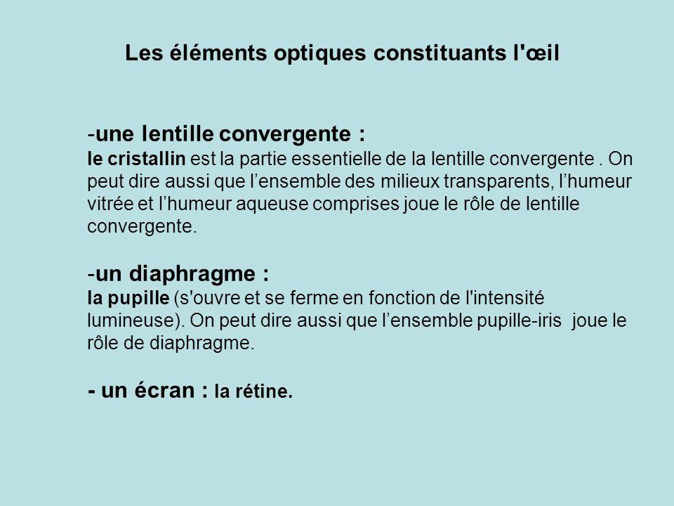 Les éléments optiques constituants l œil -une lentille convergente : le cristallin est la partie essentielle de la lentille convergente.