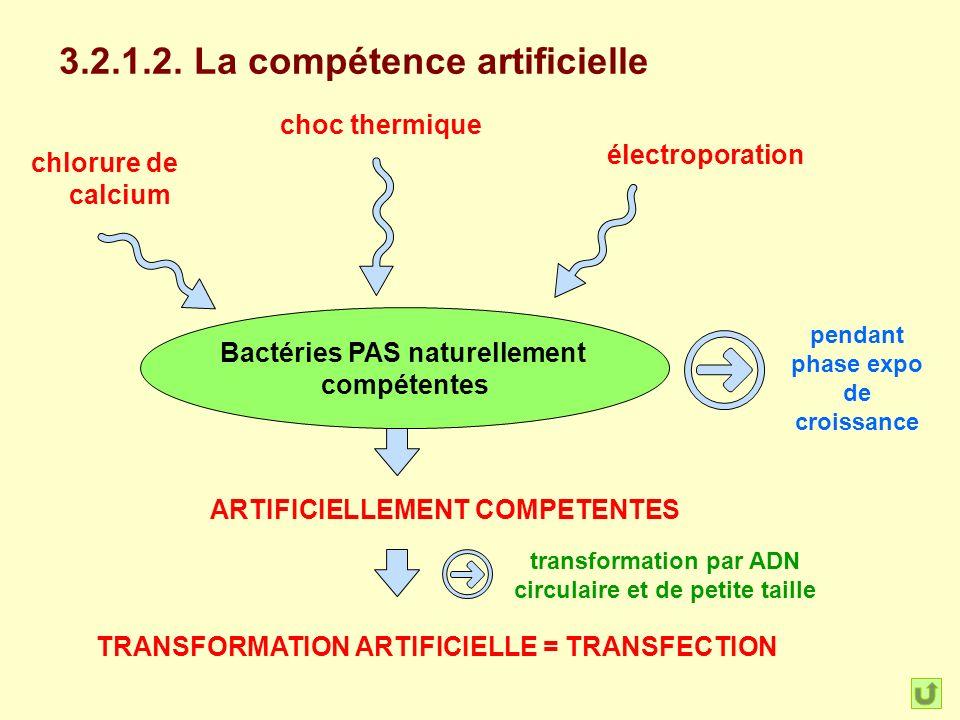 3.2.1.2. La compétence artificielle Bactéries PAS naturellement compétentes ARTIFICIELLEMENT COMPETENTES chlorure de calcium choc thermique électropor
