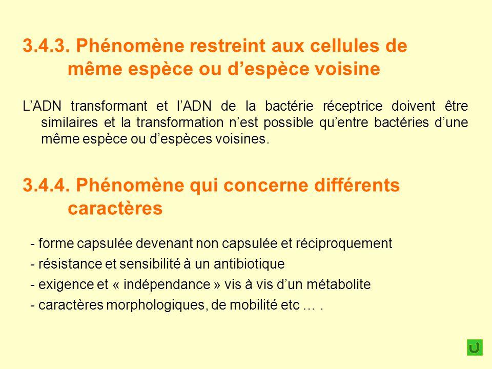 3.4.3. Phénomène restreint aux cellules de même espèce ou despèce voisine 3.4.4. Phénomène qui concerne différents caractères LADN transformant et lAD