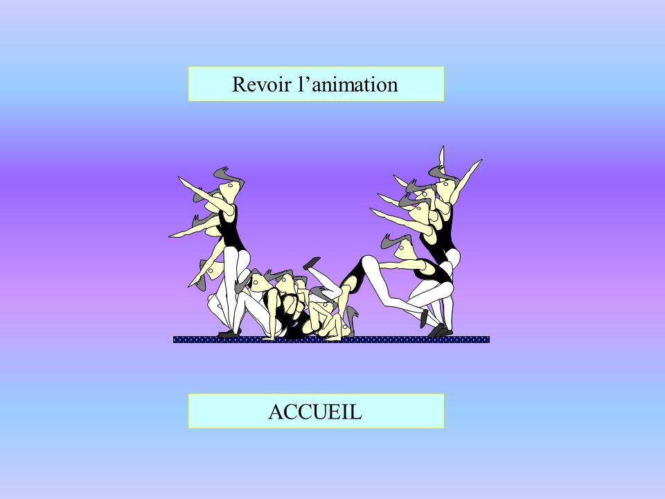 Revoir lanimation ACCUEIL