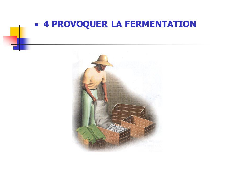 4 PROVOQUER LA FERMENTATION
