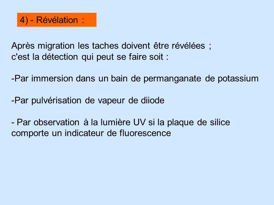 Après migration les taches doivent être révélées ; c'est la détection qui peut se faire soit : -Par immersion dans un bain de permanganate de potassiu
