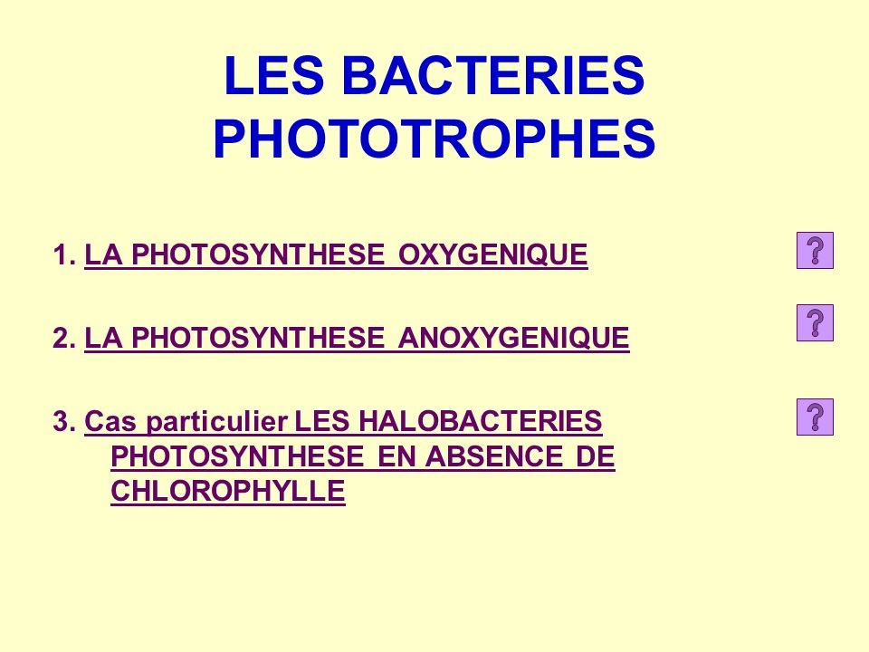 1. LA PHOTOSYNTHESE OXYGENIQUE 2. LA PHOTOSYNTHESE ANOXYGENIQUE 3. Cas particulier LES HALOBACTERIES PHOTOSYNTHESE EN ABSENCE DE CHLOROPHYLLE LES BACT