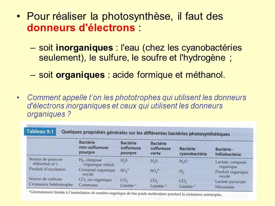 Pour réaliser la photosynthèse, il faut des donneurs d'électrons : –soit inorganiques : l'eau (chez les cyanobactéries seulement), le sulfure, le souf