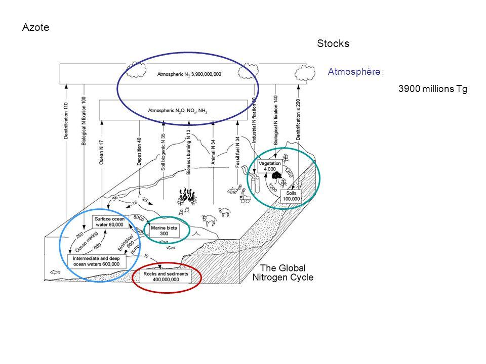 Atmosphère : 3900 millions Tg Lithosphère : 400 millions Tg Hydrosphère : 0.7 millions Tg Biomasse : 0.1 millions Tg Azote Stocks