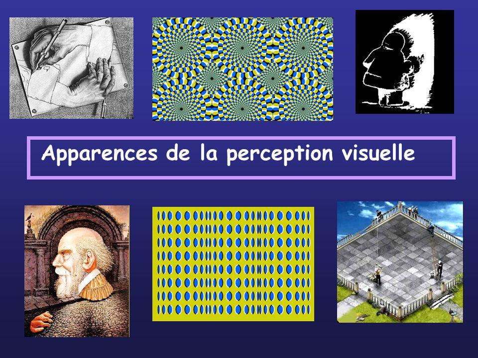 I- Des illusions géométriques liées à la propagation de la lumière 1- Réflexion