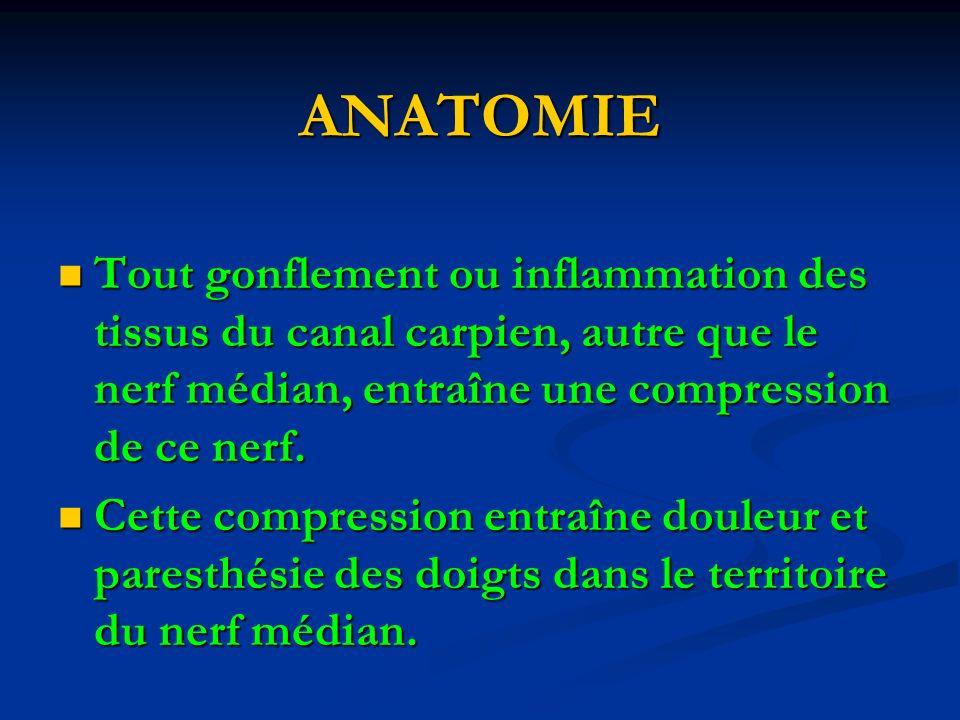 ANATOMIE Tout gonflement ou inflammation des tissus du canal carpien, autre que le nerf médian, entraîne une compression de ce nerf.
