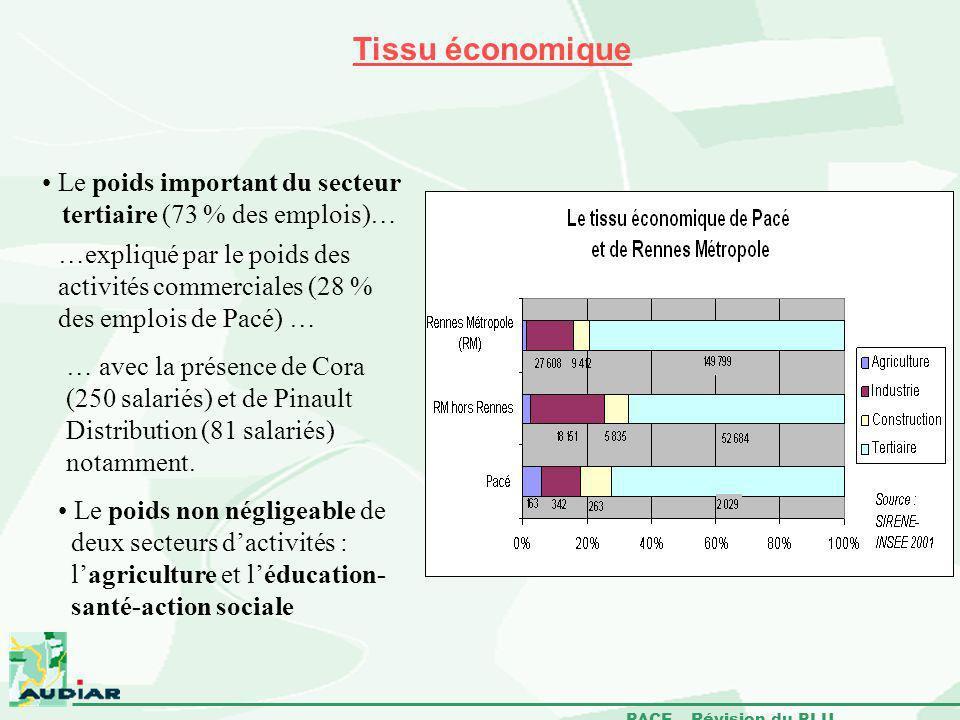 PACE – Révision du PLU Tissu économique Le poids important du secteur tertiaire (73 % des emplois)… …expliqué par le poids des activités commerciales