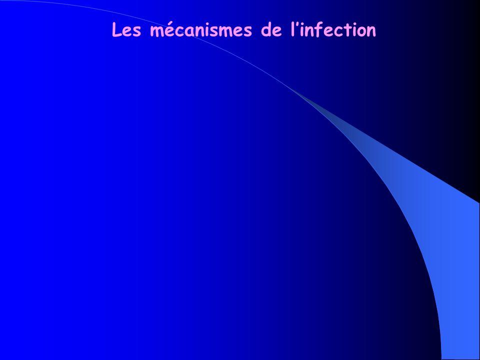 Les mécanismes de linfection