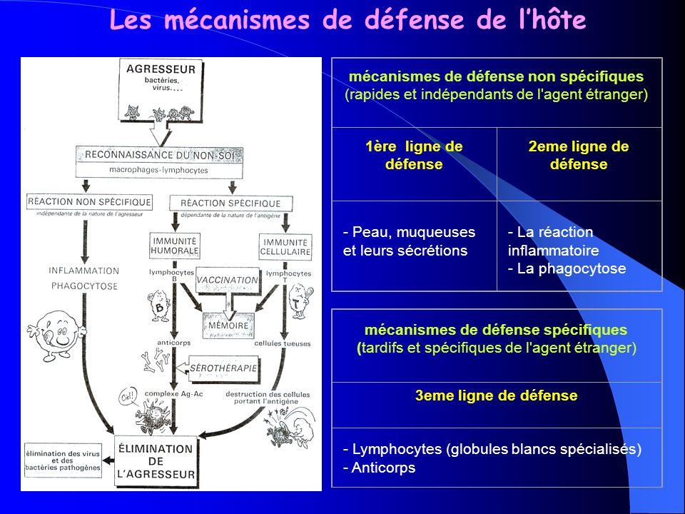 Défenses non spécifiques Peau défense chimique : les sécrétions acides ont un effet bactéricide défense physique : empêche la pénétration des microorganismes + élimination mécanique des microorganismes lors de la desquamation défense biologique : les bactéries commensales de la peau empêchent l implantation des bactéries pathogènes Muqueuse respiratoire, digestive, urogénitale défense physique : -cellules ciliées et à mucus de la muqueuse respiratoire élimine 90% des particules inhalées - Péristaltisme intestinal, le flux urinaire, les larmes diminuent l adhérence des MO aux muqueuses défense chimique : le pH vaginal et gastrique (acide), les protéases sécrétées par l intestin, le lysozyme des sécrétions nasales, lacrymales, salivaires.