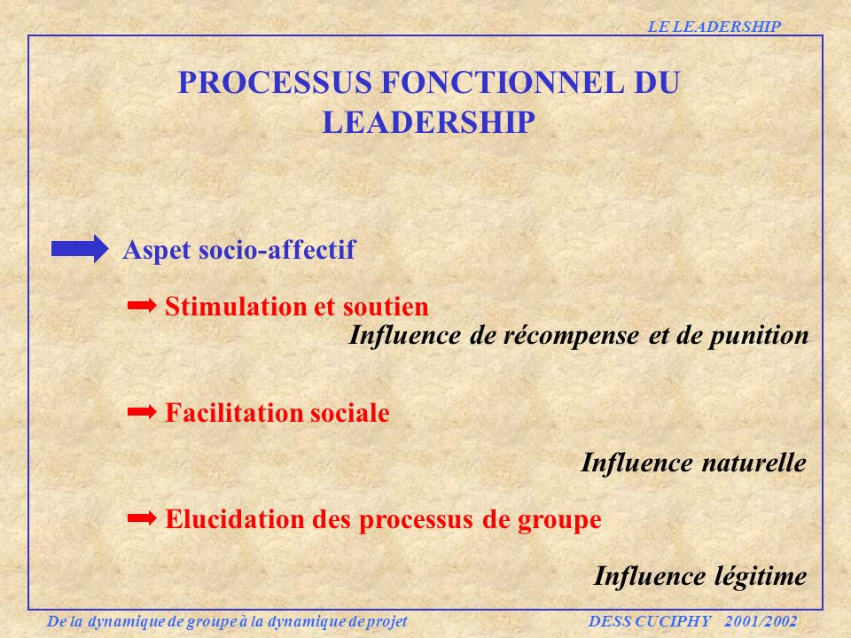 Aspet socio-affectif Stimulation et soutien Facilitation sociale Elucidation des processus de groupe PROCESSUS FONCTIONNEL DU LEADERSHIP De la dynamiq