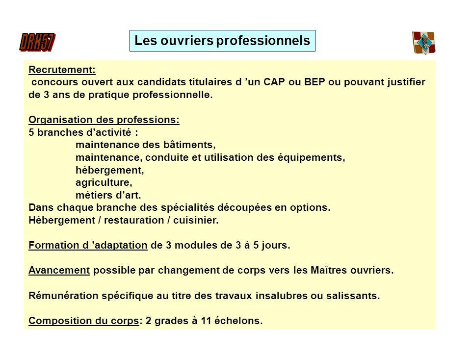 Recrutement: concours ouvert aux candidats titulaires d un CAP ou BEP ou pouvant justifier de 3 ans de pratique professionnelle. Organisation des prof