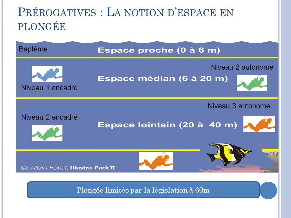 P RÉROGATIVES : L A NOTION D ESPACE EN PLONGÉE Baptême Niveau 1 encadré Niveau 2 encadré Niveau 3 autonome Niveau 2 autonome Plongée limitée par la législation à 60m