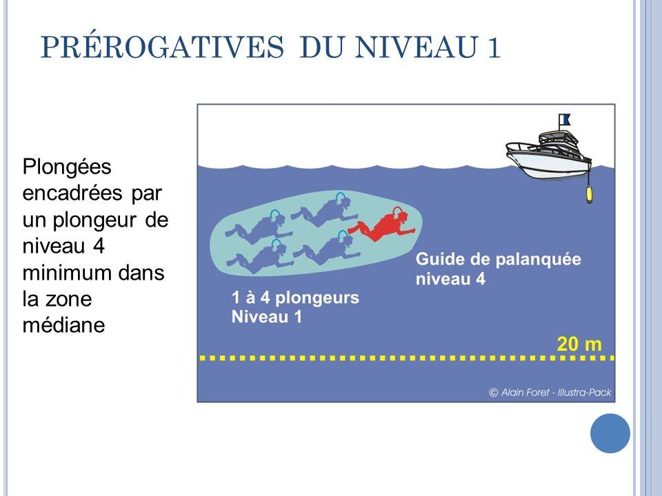 PRÉROGATIVES DU NIVEAU 1 Plongées encadrées par un plongeur de niveau 4 minimum dans la zone médiane